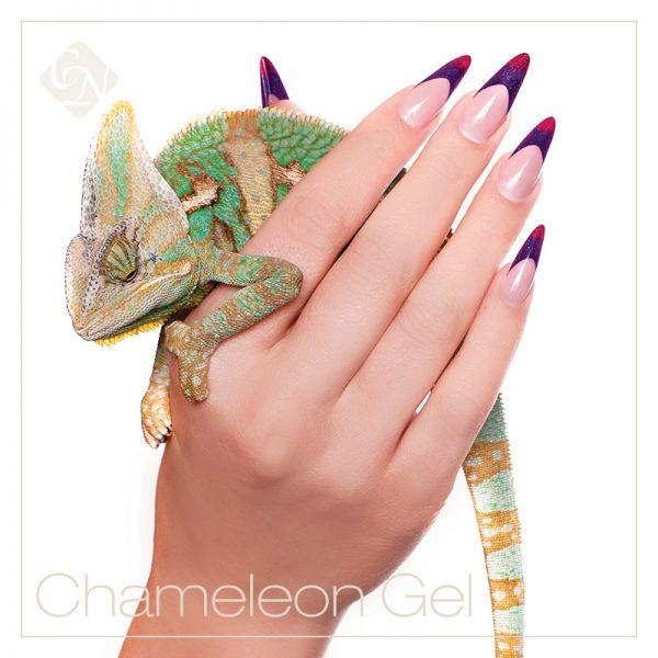 ChameleonTHERMO zselék - hőre változó színek